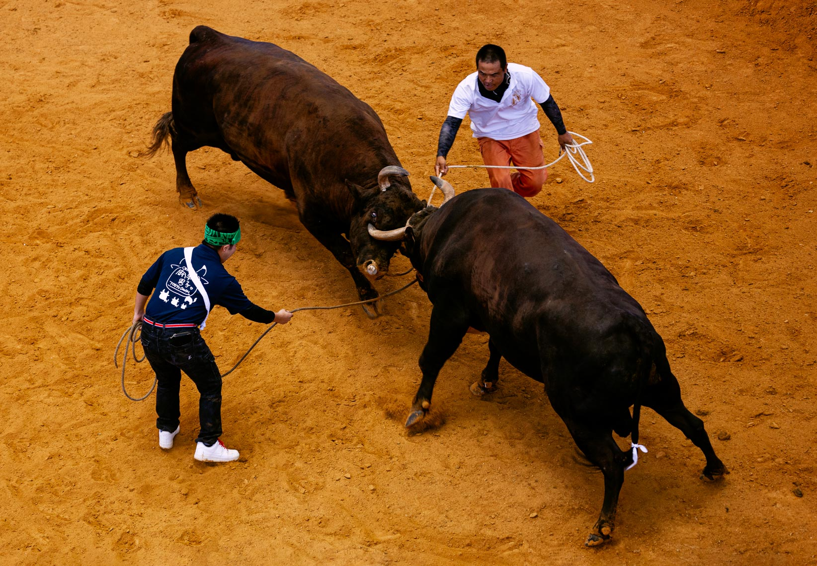20190825_Bullfighting_587-Edit-2