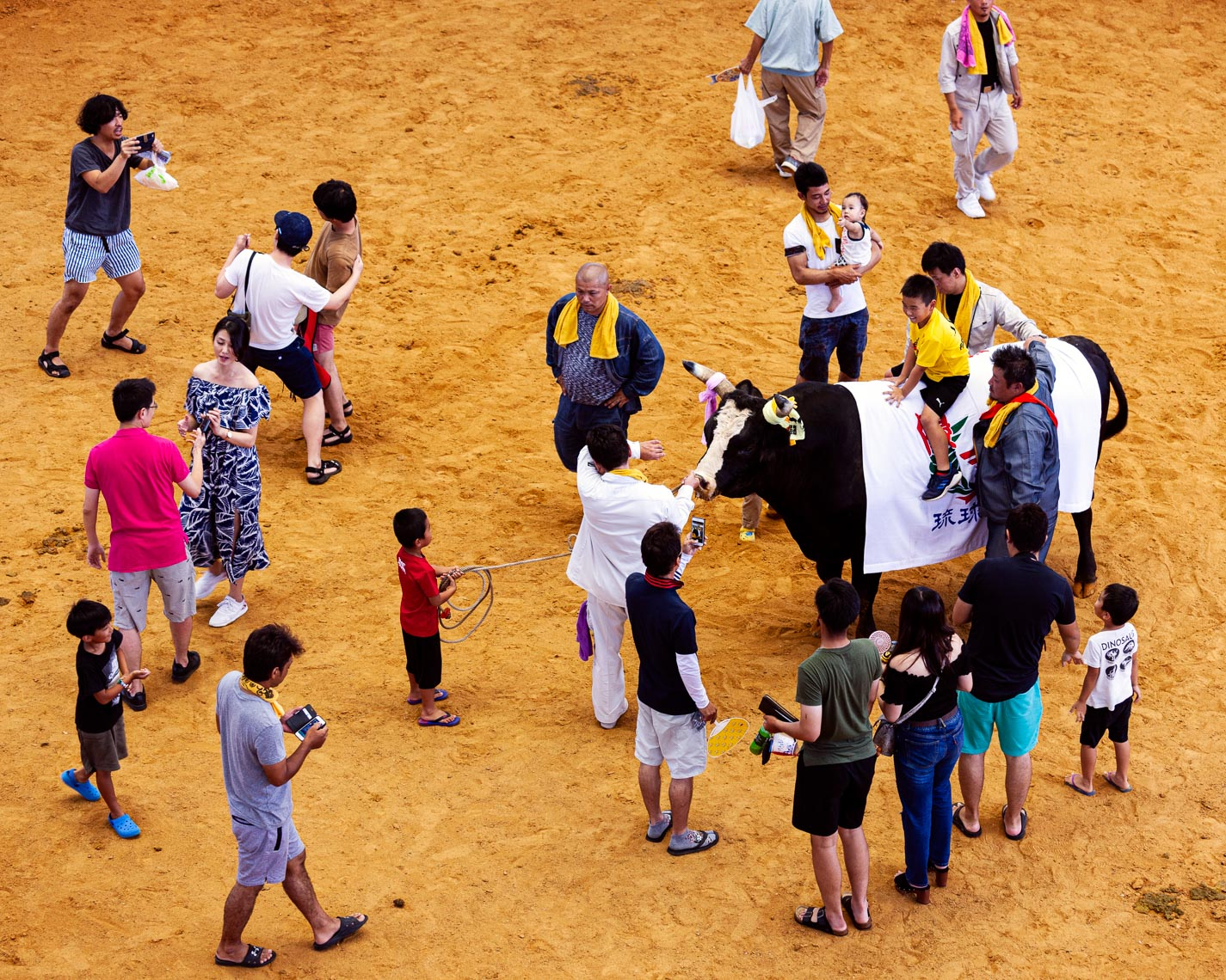 20190825_Bullfighting_658