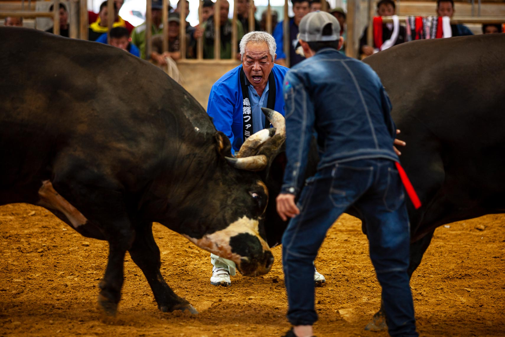 20190915_Bullfighting_113