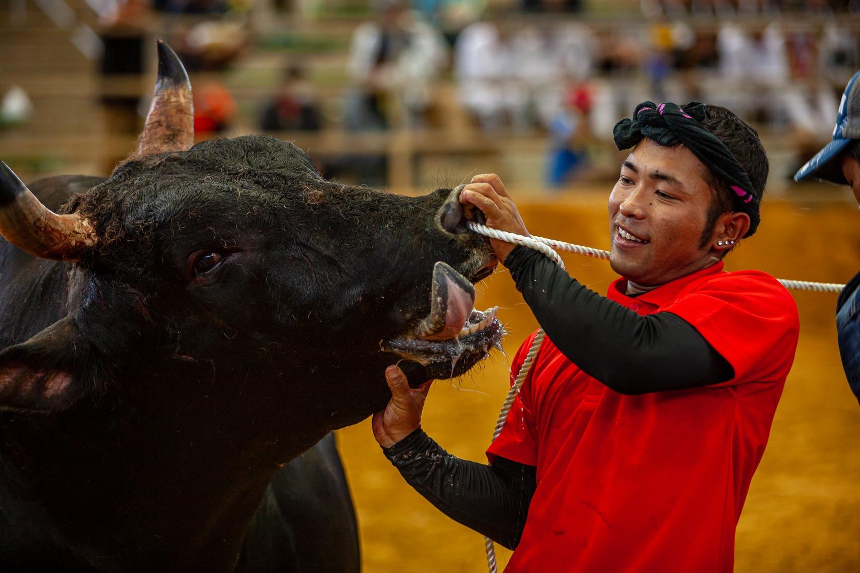20190915_Bullfighting_285